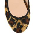House of ballerinas Josephine Leopard